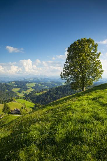 Emmental Valley, Berner Oberland, Switzerland-Jon Arnold-Photographic Print