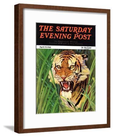 "Snarling Tiger," Saturday Evening Post Cover, April 19, 1941