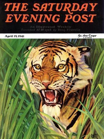 """Snarling Tiger,"" Saturday Evening Post Cover, April 19, 1941"