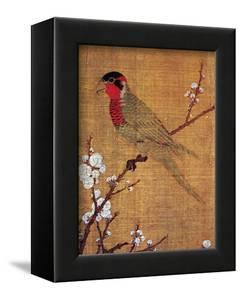 China: Parakeet by Emperor Hui-tsung