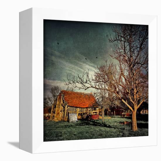 Empty Old Barn in America-Salvatore Elia-Framed Premier Image Canvas