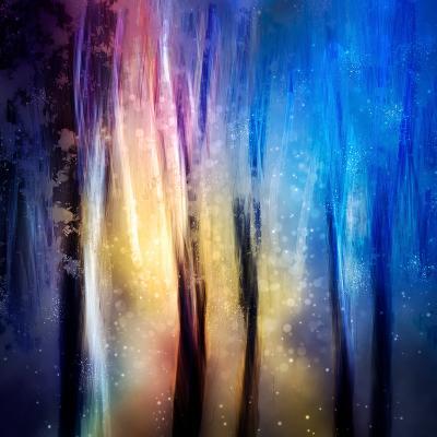 Enchanted Night-Ursula Abresch-Photographic Print