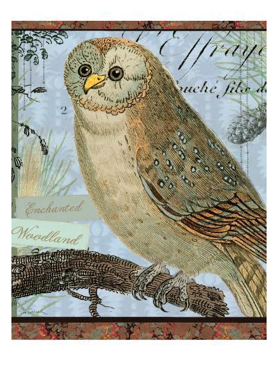 Enchanted Woodland-Sue Schlabach-Art Print