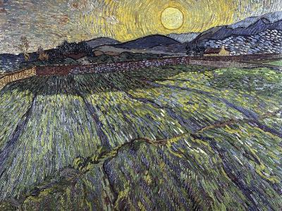 Enclosed Field with Rising Sun, 1889-Vincent van Gogh-Giclee Print