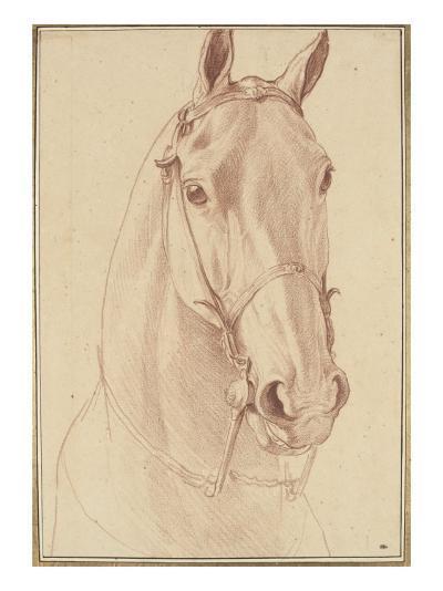 Encolure et tête de cheval bridée de face-Edme Bouchardon-Giclee Print