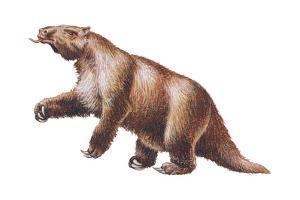 Megatherium, Extinct Ground Sloth, Mammals by Encyclopaedia Britannica
