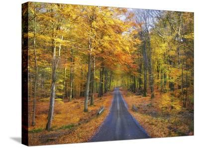 End Of The Season-Christian Lindsten-Stretched Canvas Print