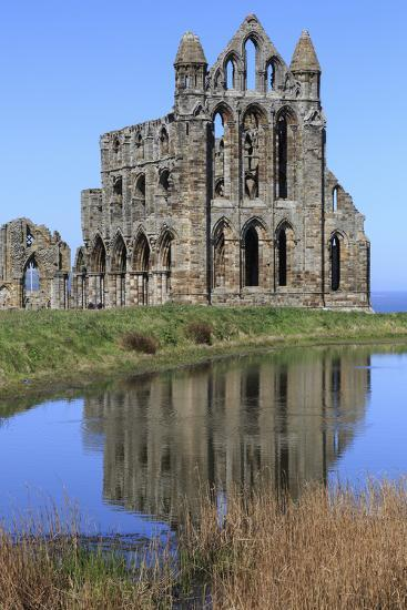 England, North Yorkshire, Whitby. Ruins of Whitby Abbey-Emily Wilson-Premium Photographic Print