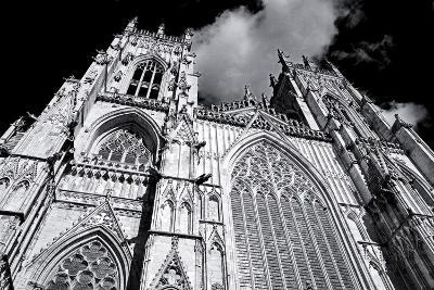 England, North Yorkshire, York. York Minster, the Largest Gothic Cathedral in Northern Europe-Pamela Amedzro-Photographic Print