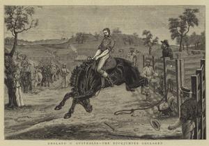 England V Australia, the Buckjumper Collared
