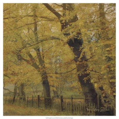 https://imgc.artprintimages.com/img/print/english-countryside-ii_u-l-f3s7wc0.jpg?p=0