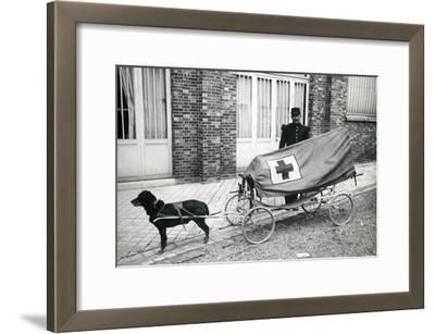 Dog Ambulance, C.1940