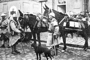Red Cross Wagon During WWI by English Photographer