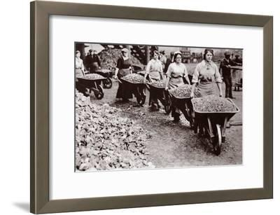 Women at Work During the Great War
