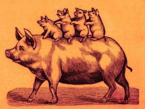 Pig with its Piglets, Illustration from 'Cole's Funny Picture Book' (Digitally Enhanced Image) by English