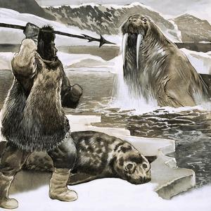 Eskimo Attacking Walrus by English School