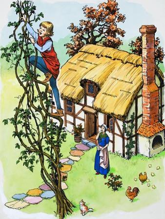 Jack Climbs the Beanstalk, Illustration from 'Jack and the Beanstalk', 1969