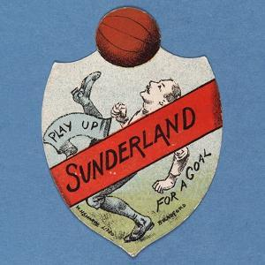 Play Up Sunderland for a Goal by English School