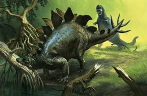 Stegosaurus by English School
