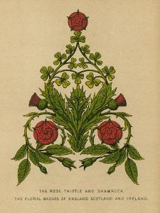 The Rose, Thistle and Shamrock. The Floral Badges of England, Scotland and Ireland by English School