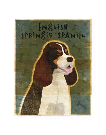 https://imgc.artprintimages.com/img/print/english-springer-spaniel-tri-color_u-l-f8cgj90.jpg?p=0