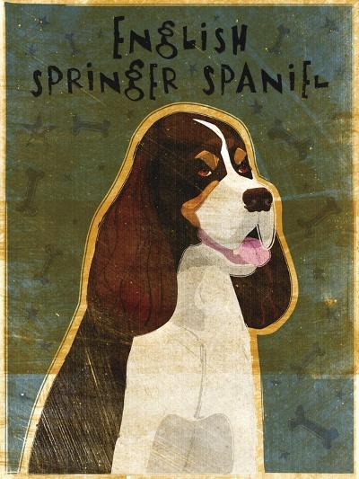 English Springer Spaniel (tri-color)-John W Golden-Giclee Print