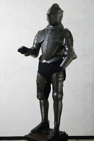 https://imgc.artprintimages.com/img/print/engraved-and-gilded-armor_u-l-ppto7a0.jpg?p=0