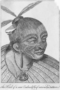 Engraving of a Maori Chieftain