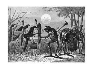 Engraving of Frog and Insect Musicians