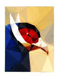 Exotic Bird by Enrico Varrasso