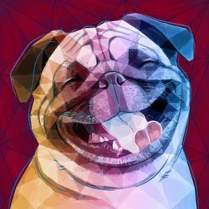 Laughing Dog by Enrico Varrasso