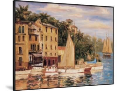 San Miguel Harbor