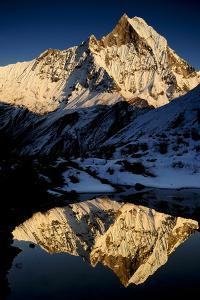 Mount Machapuchare(6997M) At Sunset. Annapurna Himal, Annapurna Sanctuary, Central Nepal by Enrique Lopez-Tapia