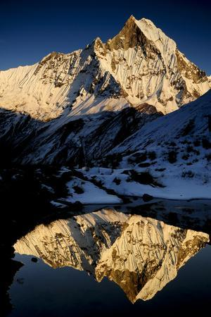 Mount Machapuchare(6997M) At Sunset. Annapurna Himal, Annapurna Sanctuary, Central Nepal