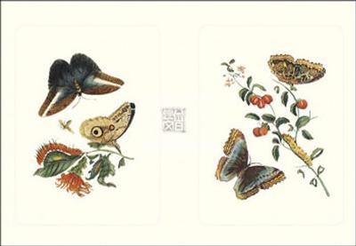 Entomology I--Art Print