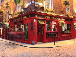 The Temple Bar Pub in Temple Bar Area by Eoin Clarke