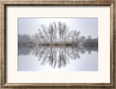 Equanimity-Philippe Sainte-Laudy-Framed Photographic Print
