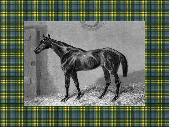 Equestrian Plaid II-E^ Hacker-Art Print