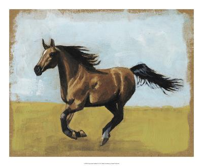 Equestrian Studies II-Naomi McCavitt-Giclee Print