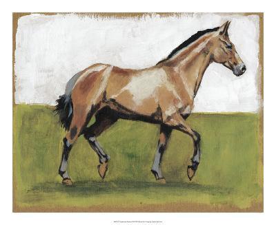 Equestrian Studies III-Naomi McCavitt-Giclee Print