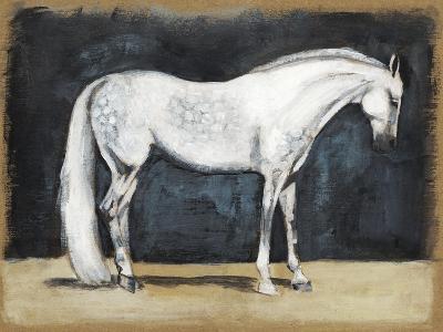 Equestrian Studies V-Naomi McCavitt-Art Print