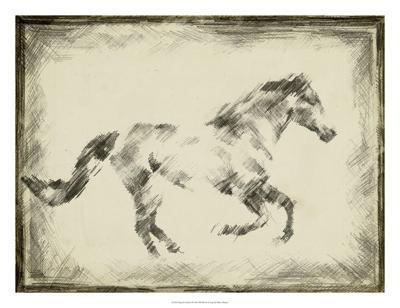 Equine Study I-Ethan Harper-Giclee Print