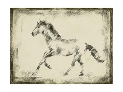 Equine Study II-Ethan Harper-Art Print