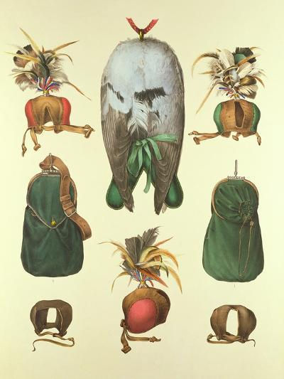 Equipment for Falconry, from 'traite De Fauconnerie' by H. Schlegel and A.H. Verster De…- Wouw Portman & Van-Giclee Print