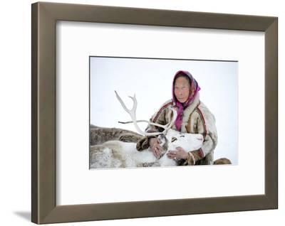 A Tundra Nenets Woman With Her -Akva- Pet Reindeer (Rangifer Tarandus), Yar-Sale District, Yamal