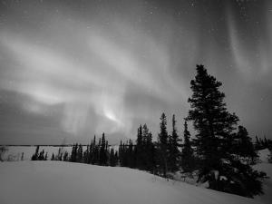 Northern Lights Northwest Territories, March 2008, Canada by Eric Baccega