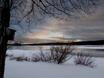 Birdhouse at Sunset by West Lake, Danbury, Connecticut-Eric Gottschalk-Photographic Print