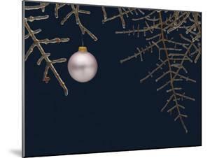 Ice on Branches by Eric Gottschalk