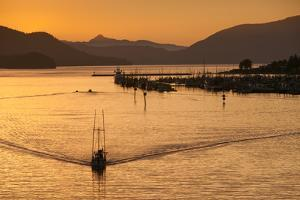 At Sunset, a Boat Carves the Water Near Mountains, a Marina and Harbor by Eric Kruszewski