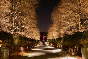 Longwood Gardens, in Pennsylvania, Showcases its Annual Holiday Lights and Decorations by Eric Kruszewski